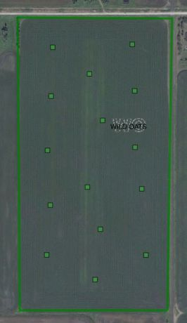 soil test points