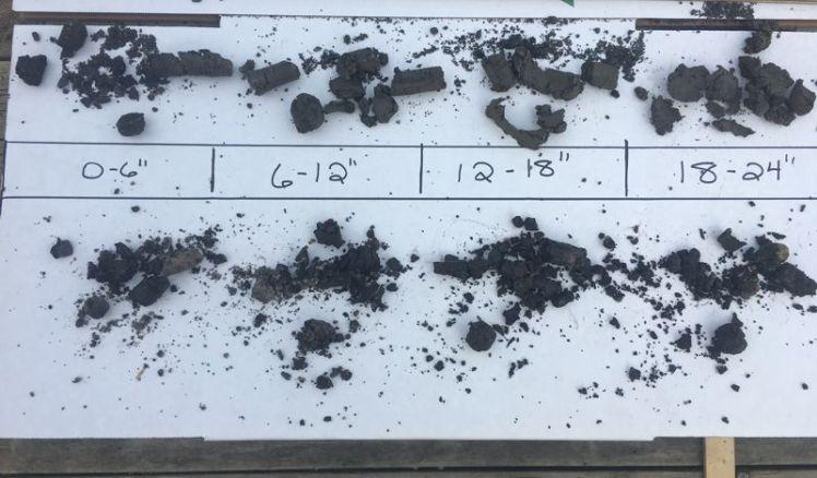 Soil Moisture Cores